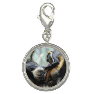 wolfs-guenon-11.jpg charms