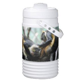 wolfs-guenon-11.jpg igloo beverage dispenser