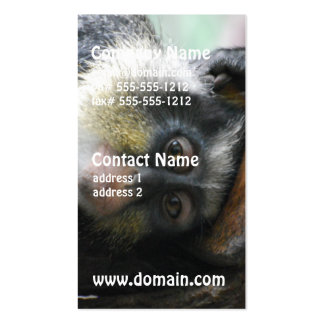 Wolf's Guenon Business Cards