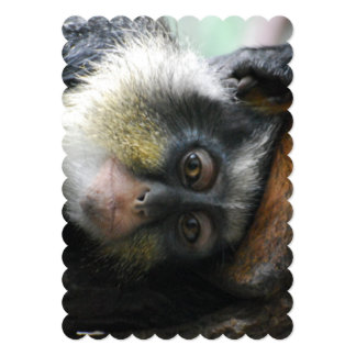 Wolf's Guenon Monkey 5x7 Paper Invitation Card