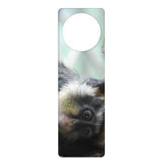 Wolf's Guenon Monkey Door Hanger