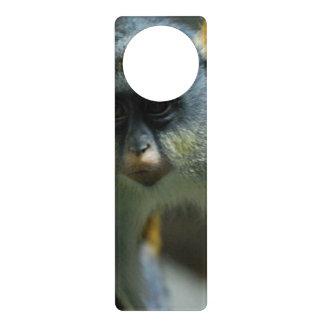 Wolf's Guenon Monkey Door Hangers