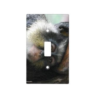 Wolf's Guenon Monkey Light Switch Plates