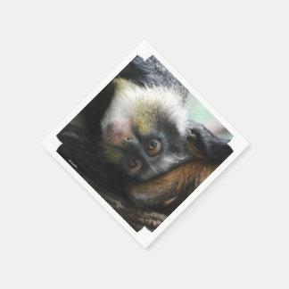 Wolf's Guenon Monkey Standard Cocktail Napkin