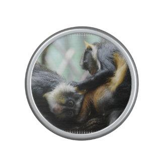 Wolf's Guenon Bluetooth Speaker