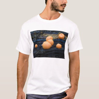 Wolf's Milk Groening's Slime Lycogala Epidendrum T-Shirt
