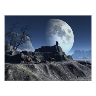 Wolfy Póster