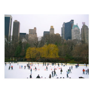 Wollman Rink (Central Park, New York City) Postcard