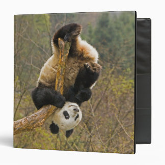 Wolong Panda Reserve, China, 2 1/2 yr old 3 Ring Binder