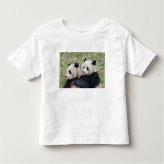 Wolong Reserve, China, Giant panda hugging Tshirts