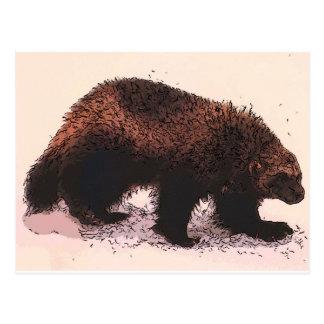 Wolverine camina en slope.jpg nevoso tarjeta postal