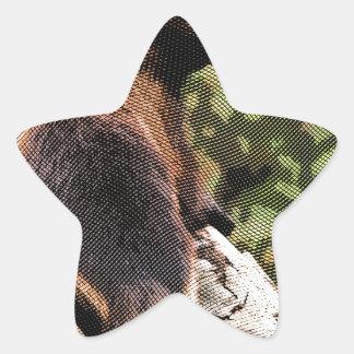 Wolverine grabado pegatina en forma de estrella