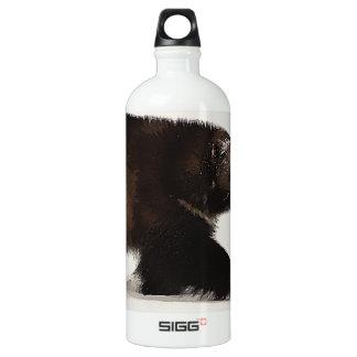 Wolverine walking aluminum water bottle