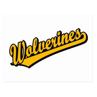 Wolverines script logo in orange postcard