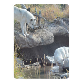 Wolves Animal Forest Peace Love Destiny Art Card
