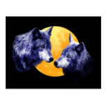 Wolves at full moon post cards