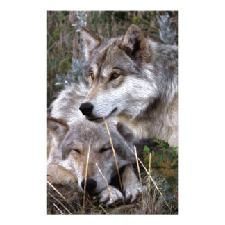 Wolves ~ Digital Oil Paining Stationery