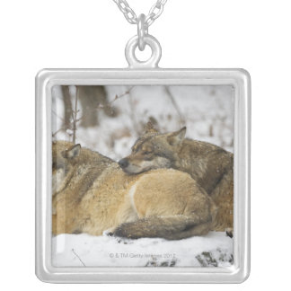Wolves in the Bawarian Wood Square Pendant Necklace