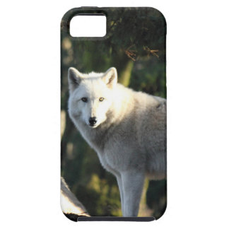 Wolves in the Forest iPhone 5 Covers