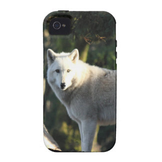 Wolves in the Forest iPhone 4/4S Covers