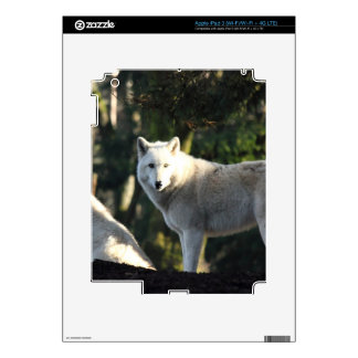 Wolves in the Forest iPad 3 Skin
