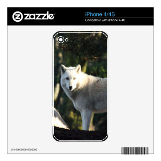 Wolves in the Forest Skin For The iPhone 4