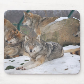 Wolves in Winter mousepad