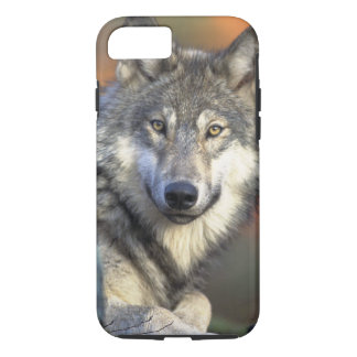 Wolves iPhone 8/7 Case