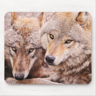 Wolves Mouse Pads