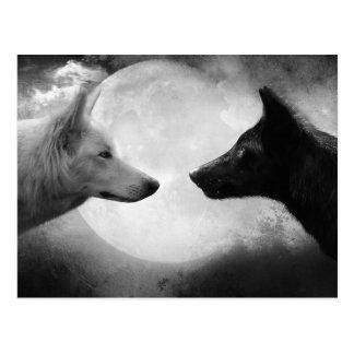 Wolves Postcards