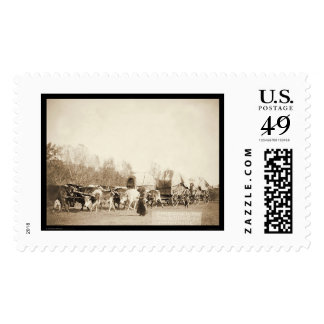 Woman Bullwhacking Oxen SD 1887 Stamp