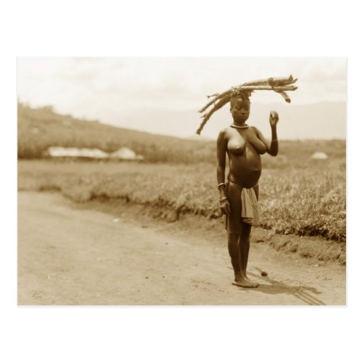 Woman carrying bamboo, Rwenzori Range, Uganda Postcard