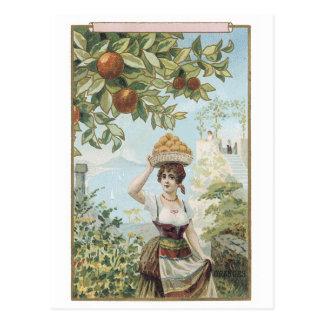 Woman Carrying Basket of Fruit Postcard