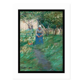 Woman on Garden Pathway Postcard