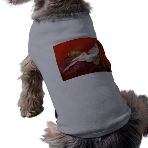Woman on Red Sofa Pet T-shirt