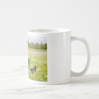 Woman sitting with laptop in spring meadow coffee mug