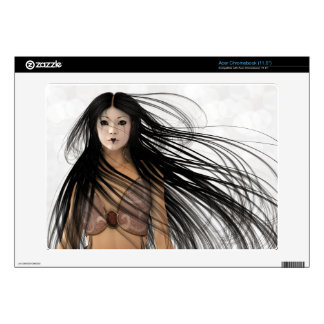 Woman Warrior Fantasy Illustration Acer Chromebook Decals
