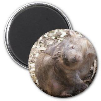 Wombat Scratch 2 Inch Round Magnet