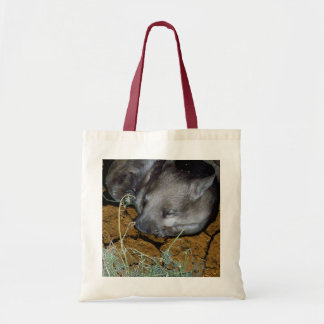 Wombat_Siesta_Time_Budget_Hand_Grocery_Tote_Bag Tote Bag