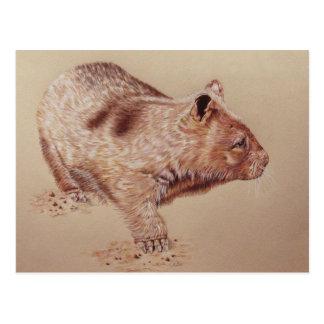 Wombat Tarjeta Postal