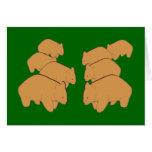 Wombats Grußkarte