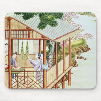 Women doing domestic work mouse pad