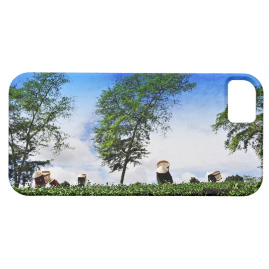 Women Harvesting Tea iPhone SE/5/5s Case