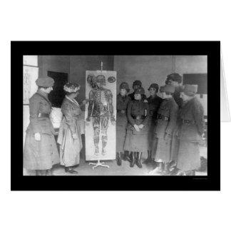Women Study Anatomy YWCA 1918 Card