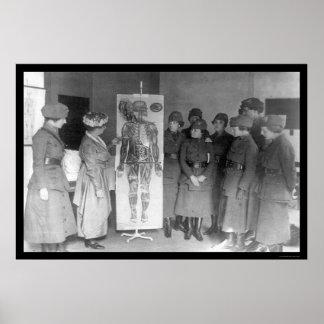 Women Study Anatomy YWCA 1918 Poster