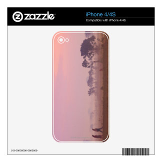 Women Villagers iPhone 4S Decal