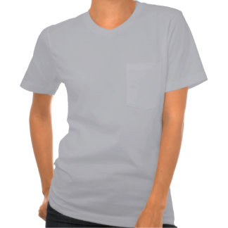 Women's American Apparel Pocket T-Shirt 7 colors
