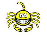 Scorpio smile Zodiac sign  womens_apparel_tshirt
