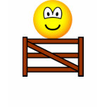 Sitting on the fence emoticon   womens_apparel_tshirt