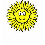 Sunflower buddy icon   womens_apparel_tshirt